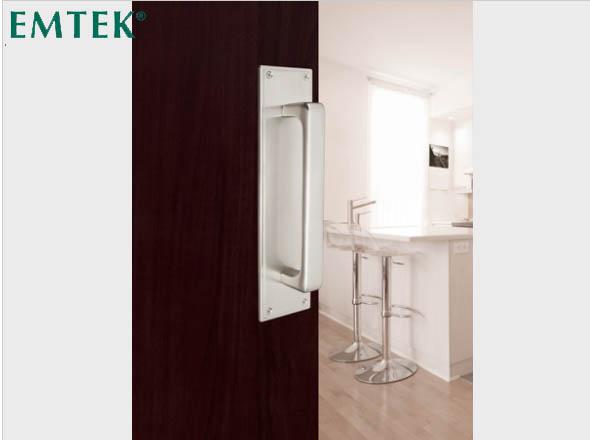 bradenton_florida_doors_hardware_satin_nickel_entryset_baden_emtek_2